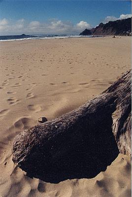 Lincoln City Oregon Complete Guide Lincoln City Beaches