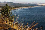 Manzanita deep blue viewpoints