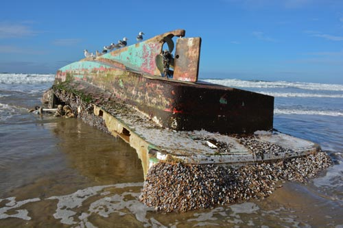Japanese fishing boat washes up near cannon beach oregon for Fishing spots near me no boat