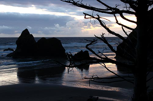 Photo: Arcadia Beach near Cannon Beach