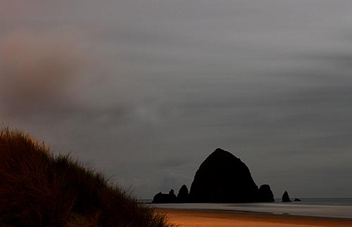 Oregon Beaches Aglow with Freaky Critters - About Oregon Coast Dinoflagellates