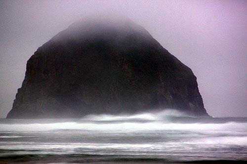 Shark Sightings On N Oregon Coast Cause For Warnings