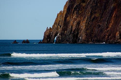 One Path Super >> Manzanita Freaky Facts, Weird Science on N. Oregon Coast