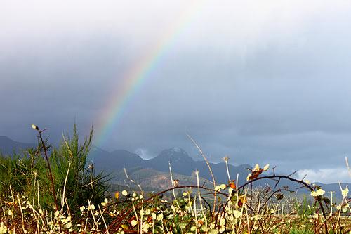 A Sampling Of Wacky Oregon Coast Weather Photos
