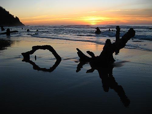 Eight Amazing Finds Along 120 Miles of Oregon Coast