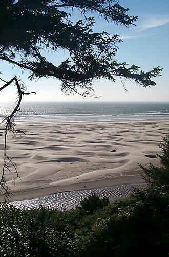 Agate Beach Dunes Newport Oregon Coast Virtual Tour