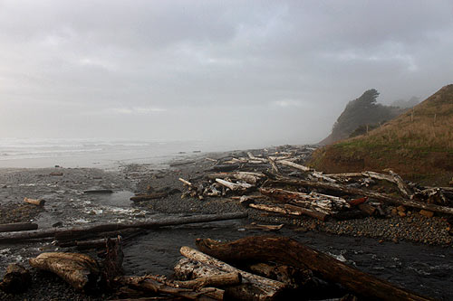 Oregon Coast Officials Seek Input on Lincoln County Park Improvements