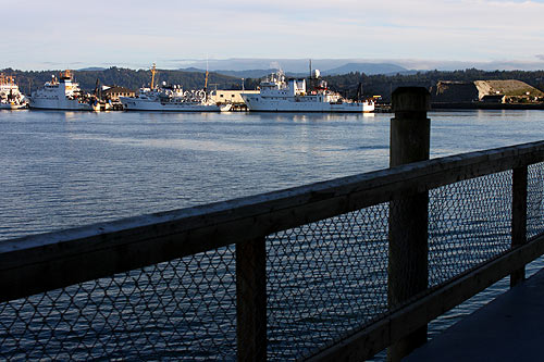 Parade, Carnival and Historic Boat Tour on Central Oregon Coast in May