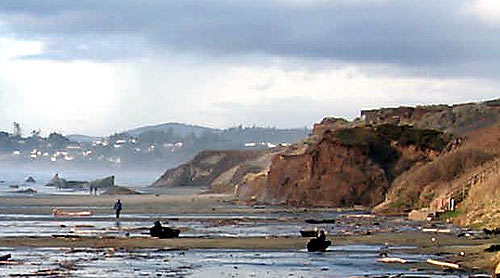 Cliff Walls Of Nye Beach Newport Oregon Coast Virtual Tour