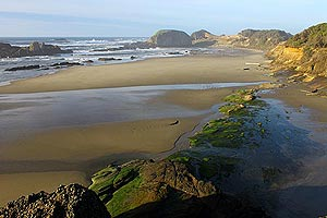 Waldport - Seal Rock Attractions