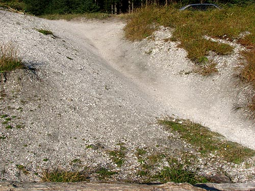 Photo: the access at Bob Creek Wayside is an actual shell midden